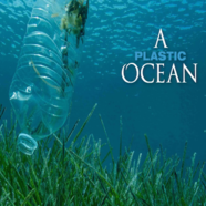 A Plastic Ocean - free screening at Durlston Court School