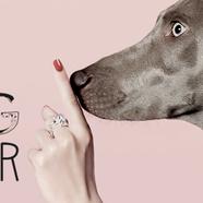 Dog fever - wear your dog on your finger!